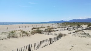 Grans platges amb els Pirineus que van baixant per capbussar-se dins la mar Mediterrània