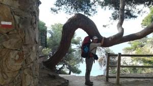 Jenn abraçant un arbre contorsionista