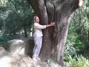 Per que ens estimem molt els arbres