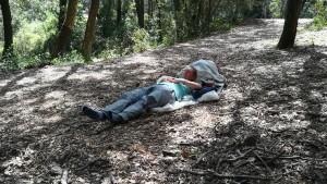 El cansament, la calor i d'altres factors de l'aventura converteixen gairebé qualsevol lloc, en un bon indret per descansar