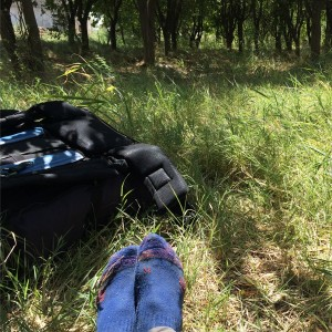 Ah, a grassy spot to rest for a couple hours!